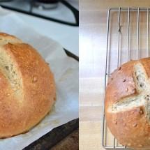 آموزش تهیه نان عسلی با تخم آفتابگردان